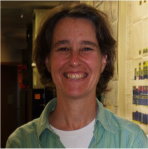 Hydrogeologist, Madeline Gotkowitz