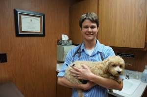 Dr. Jordy Waller from Spring Harbor Animal Hospital. Photo credits go to Zhejun Wang.